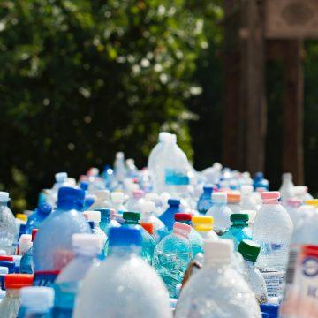 Śmieci w lesie. Zaostrzenie kar za wyrzucanie śmieci